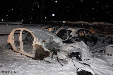 Karoserie skradzionych aut w dziupli