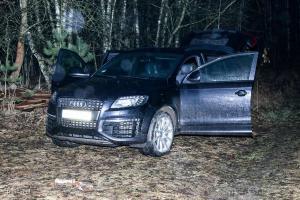 Audi zaparkowane w lesie